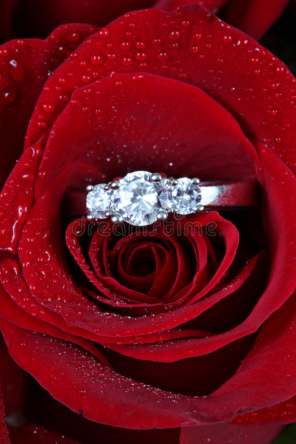 Download Ring in red rose petals stock image. Image of love, luxury - 13165453