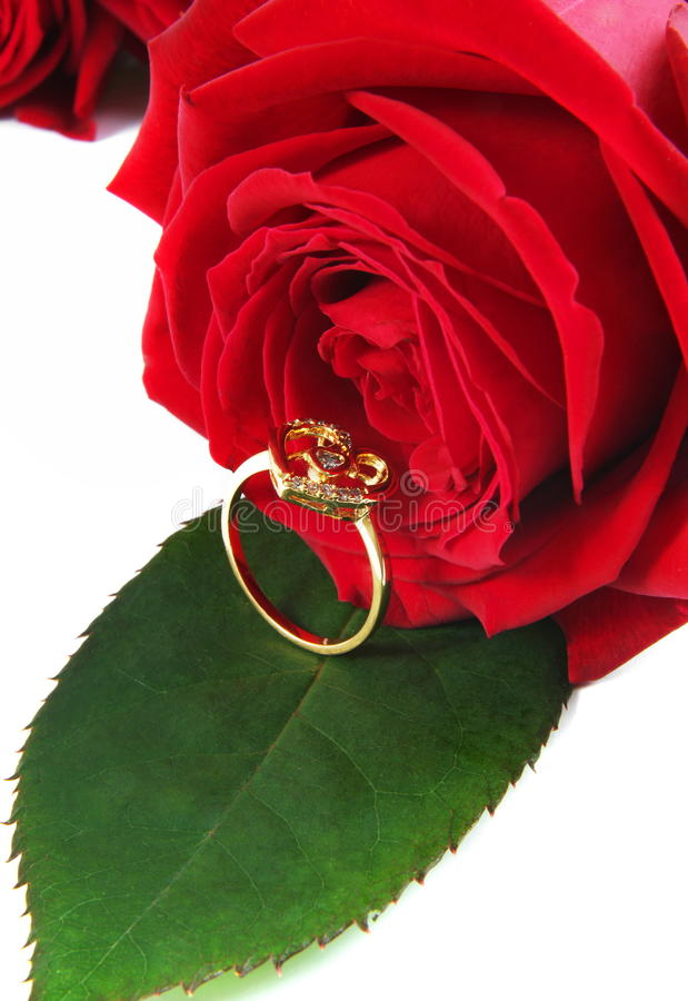 Ring with rose royalty free stock photos