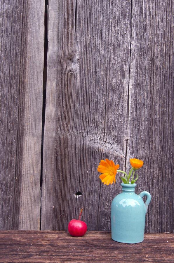 Ringblommacalendulaen blommar i litet vas och äpple arkivfoto