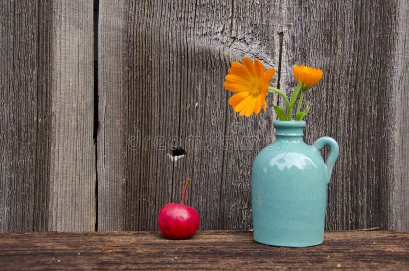 Ringblomman blommar i liten vas och rött äpple fotografering för bildbyråer