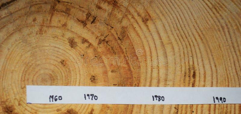 Ringe auf einem langen kapitel datiert Schattierte Entlastungskarte stockbild