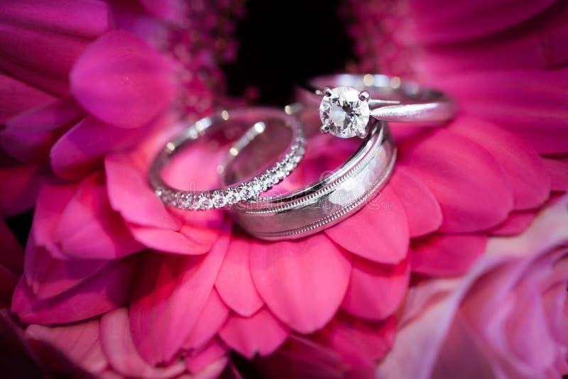 Ringen op purpere bloem stock fotografie
