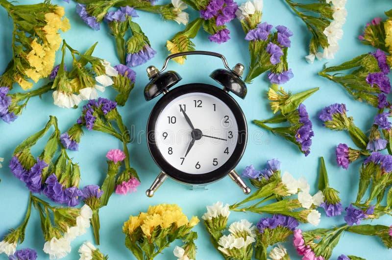 Ringklocka med kulöra blommor på blå bakgrundssammansättning fotografering för bildbyråer