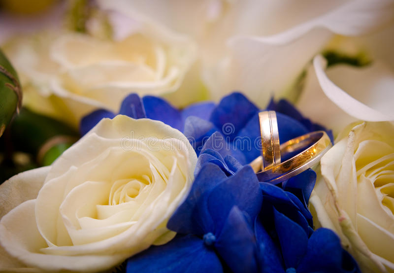 Download Rings stock image. Image of life, flowers, greeting, partners - 27756919