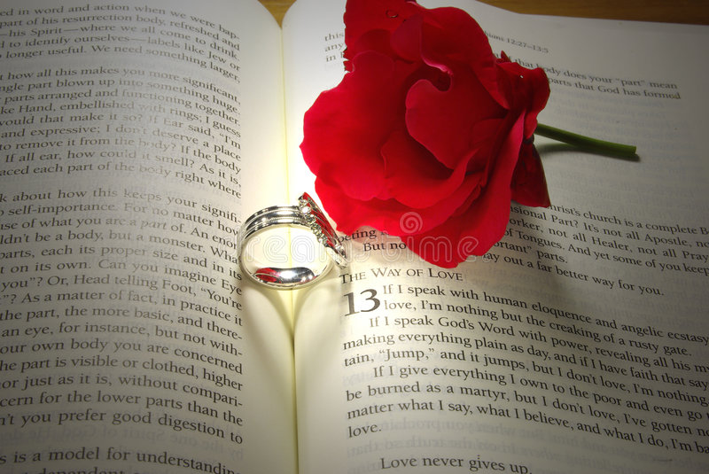 Rings and Rose on Bible stock photo