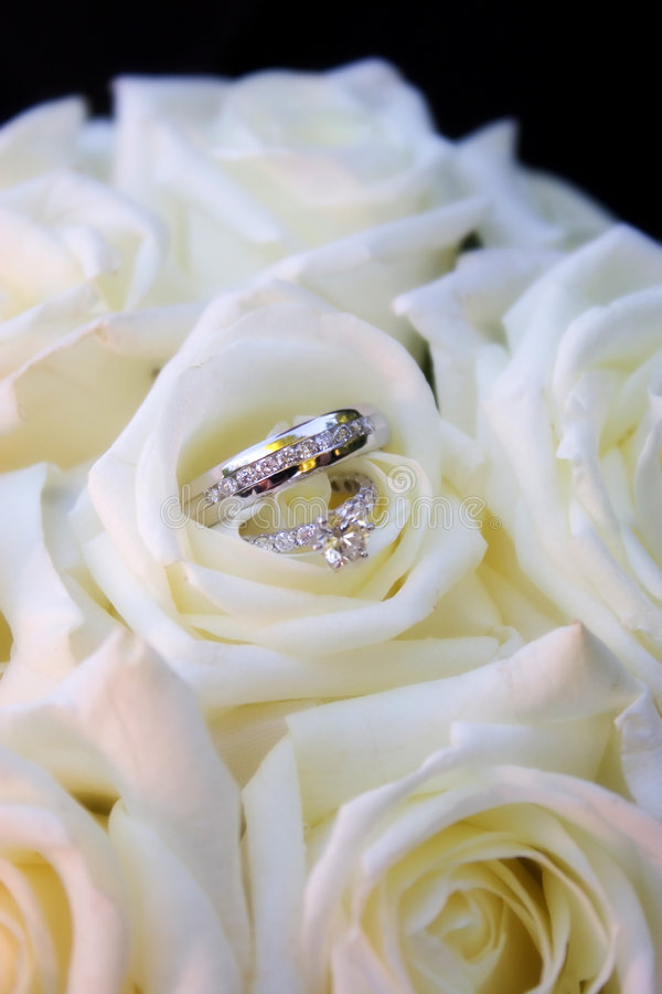 Download Rings in white roses stock image. Image of ring, relation - 1883335