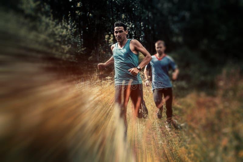 Rinnande athlets för försök som utarbetar i skogen arkivbilder