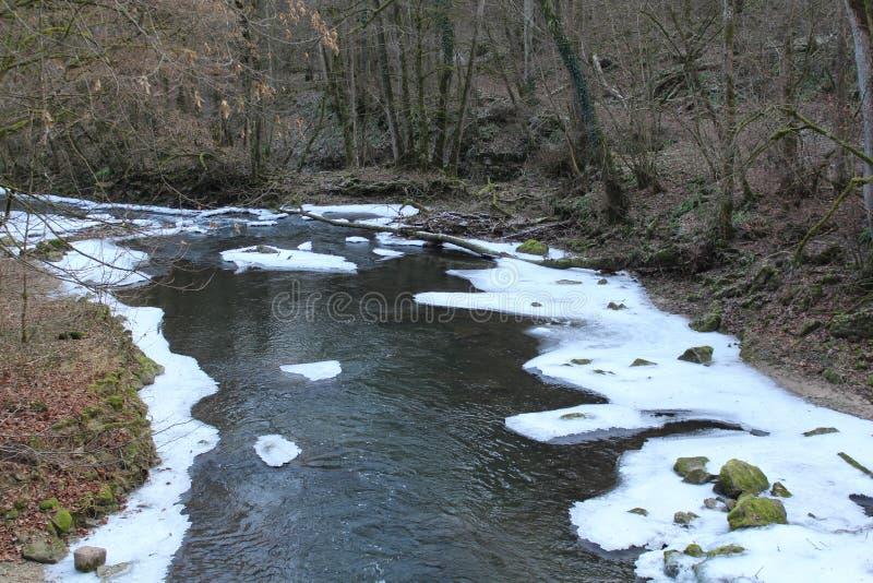 Rinnande flod i vinter royaltyfri fotografi