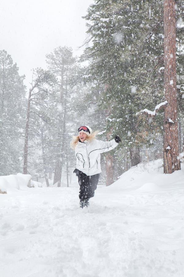 Rinnande snö arkivfoton