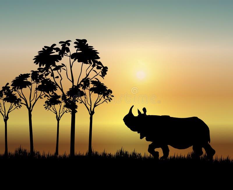 Rinoceronte en la salida del sol ilustración del vector