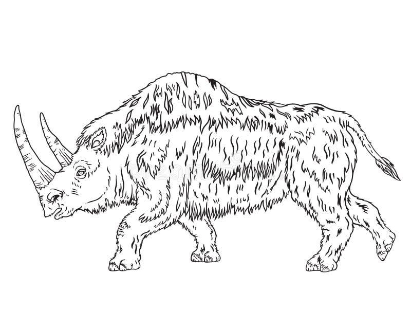 Rinoceronte lanoso vecchio immagine stock libera da diritti