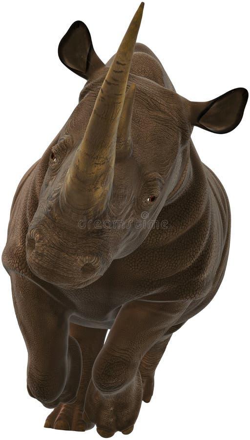 Rinoceronte, rinoceronte, fauna selvatica, isolato, facente pagare illustrazione vettoriale