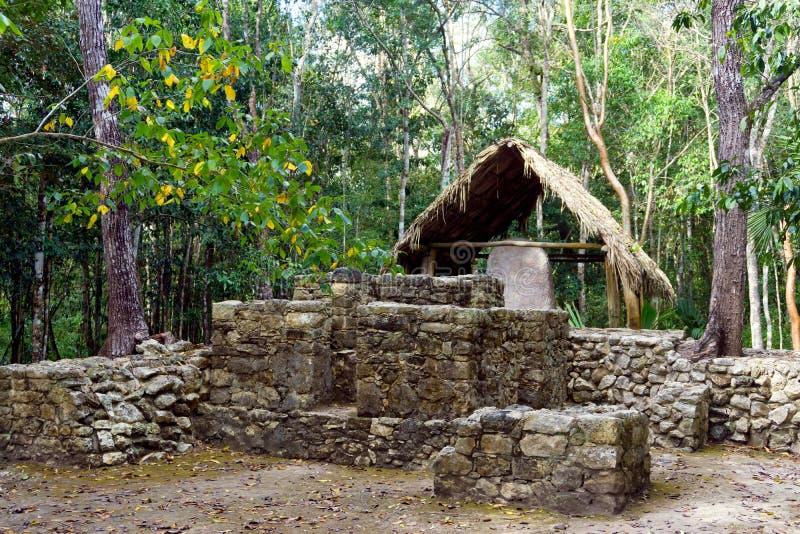 Rins dans Coba, Mexique image stock