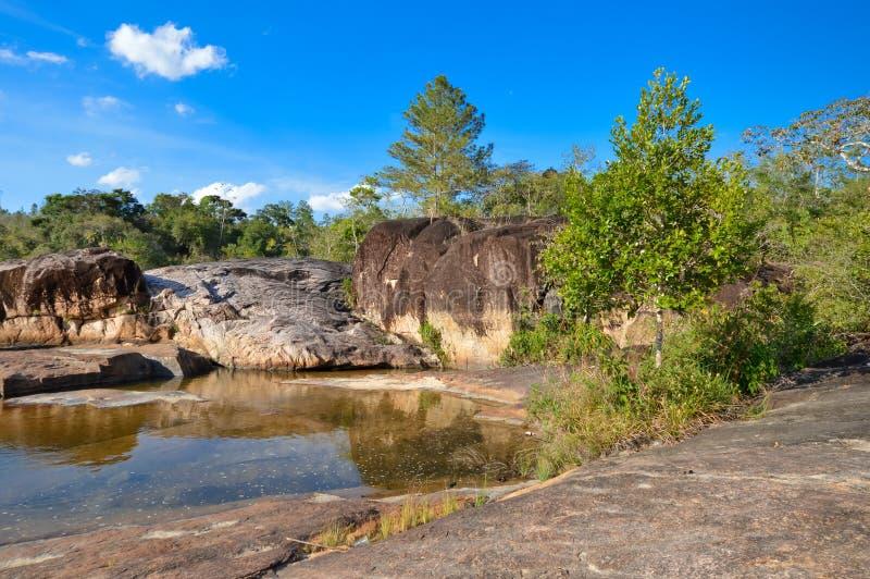 Rio auf Pools im Bergkiefer Ridge Forest Reserve, Belize lizenzfreies stockfoto