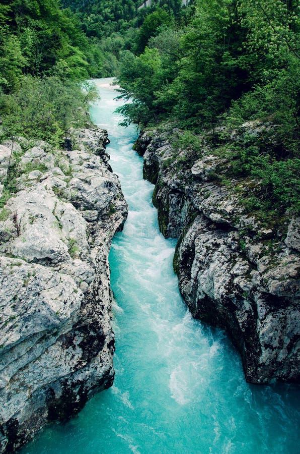Rio azul bonito Soca do apline, vale de Soca, Eslovênia, Europa fotos de stock royalty free