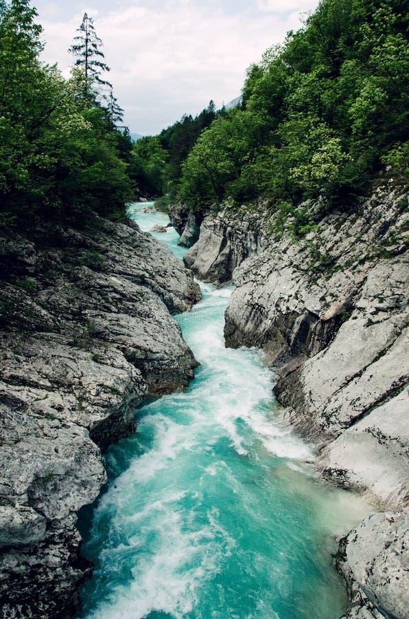 Rio azul bonito Soca do apline, vale de Soca, Eslovênia, Europa imagem de stock royalty free