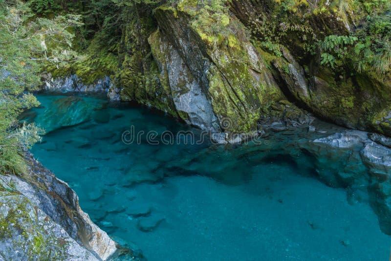 Rio azul na trilha azul das associações Ilha sul, Nova Zelândia A trilha azul da associação é uma caminhada curto da autoestrada  imagem de stock royalty free