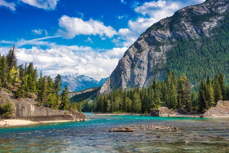 Rio Banff da curva, canadense Montanhas Rochosas fotos de stock