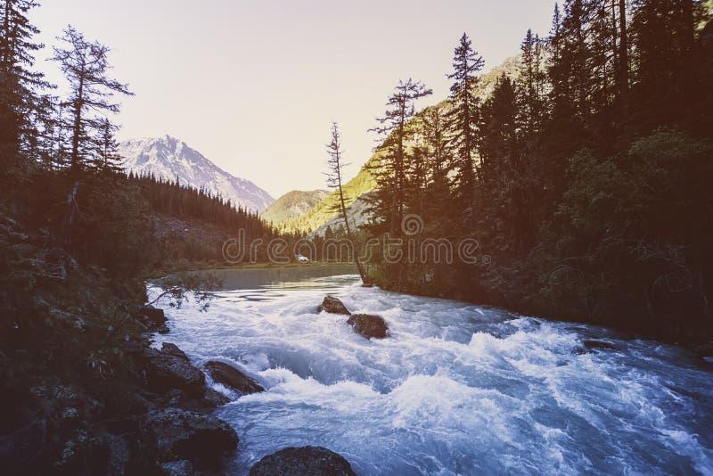 Rio bonito da montanha outono Água atual Árvore na pedra Flua a água paisagem da cachoeira em Canadá Os bordos vermelhos le imagem de stock