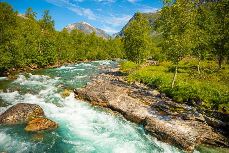 Rio bonito da montanha perto de Trollstigen, Noruega imagem de stock royalty free
