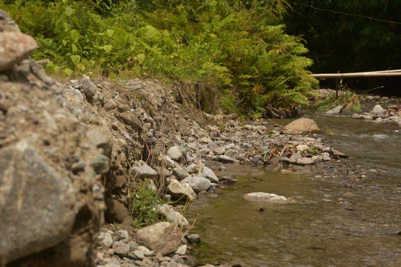 Rio bonito e natural de Kawatuna fotos de stock