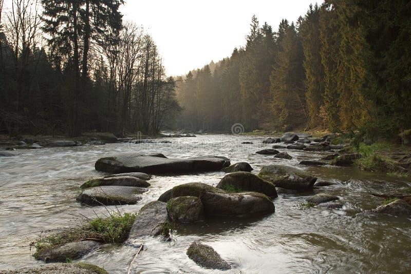 Rio bonito na montanha com árvores imagens de stock royalty free