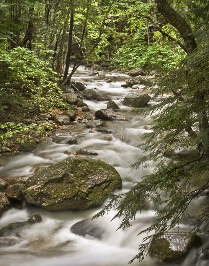 Rio branco das montanhas imagem de stock