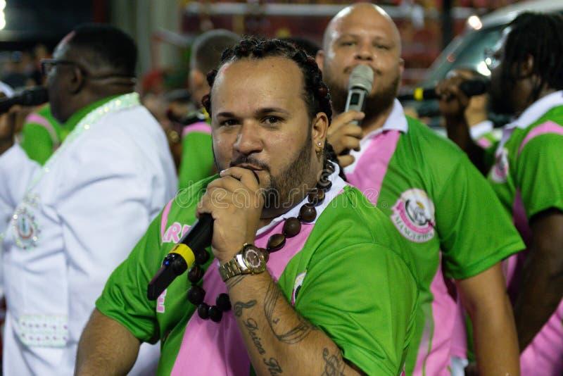 Carnival 2019 - Mangueira royalty free stock photos