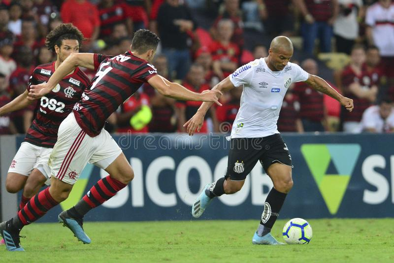 Brazilian Championship 2019 royalty free stock photos