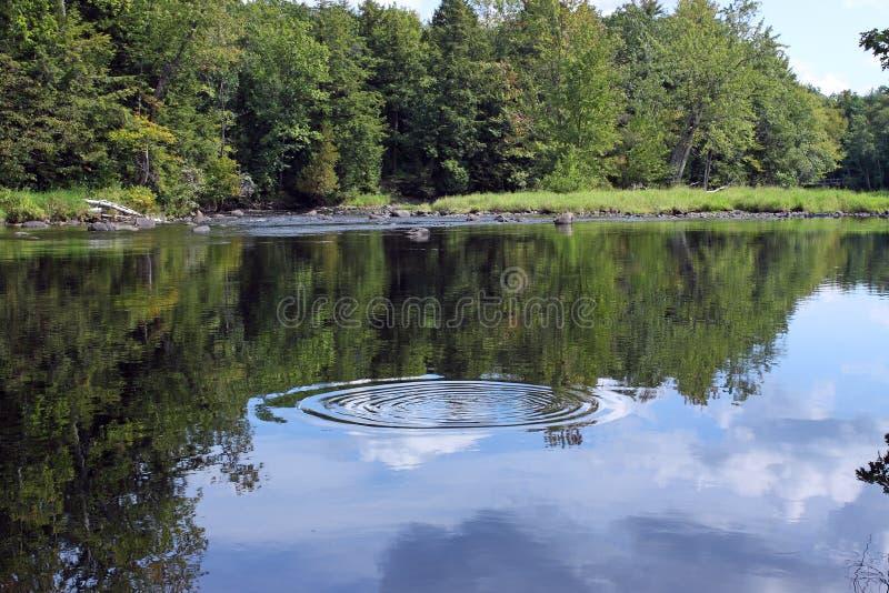 Rio calmo com anel da água fotos de stock royalty free