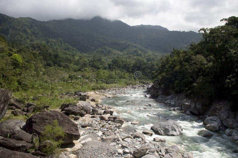 Rio Cangrejal royalty-vrije stock afbeeldingen