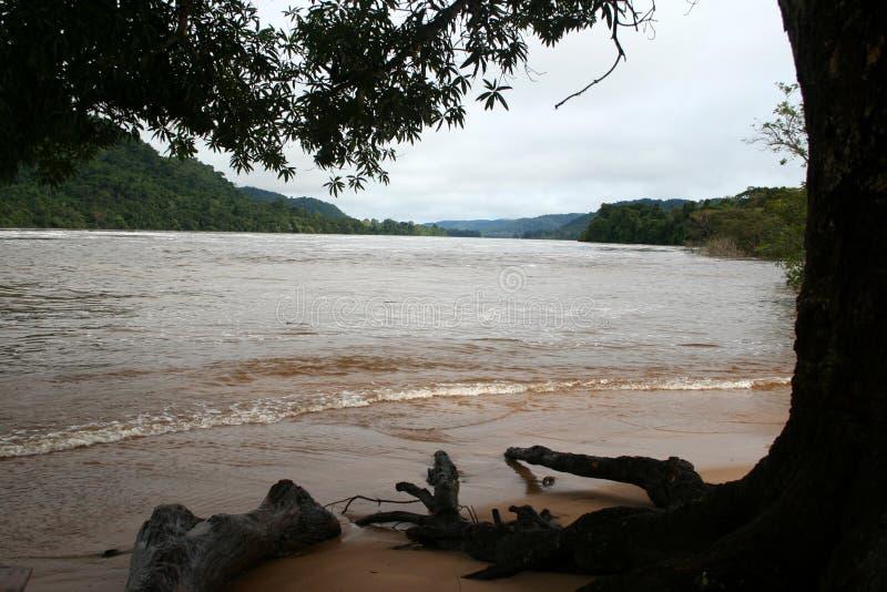 Rio Caura 2 imagens de stock