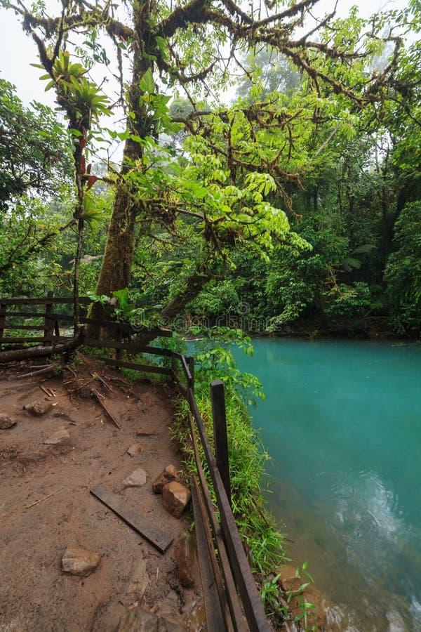 Rio celeste en weelderig regenwoud stock afbeelding