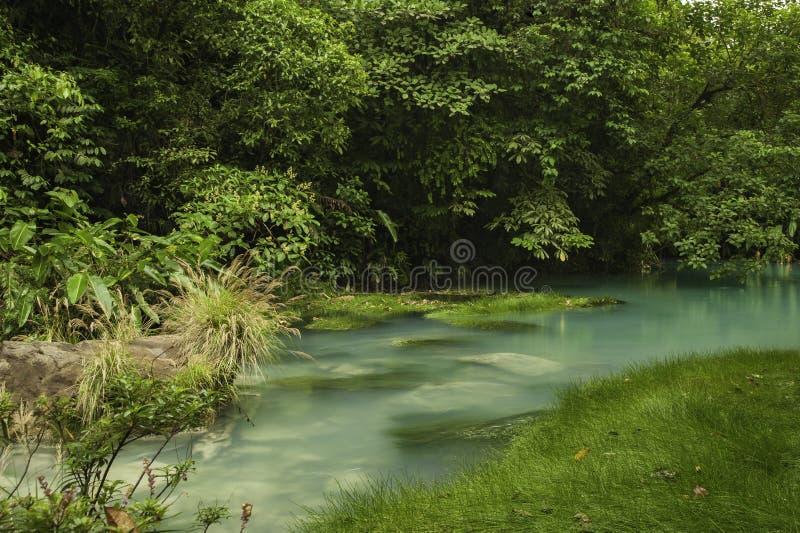 Rio Celeste i Costa Rica fotografering för bildbyråer