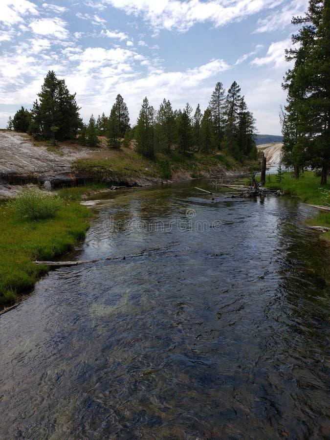 Rio Clear Yellowstone imagens de stock royalty free