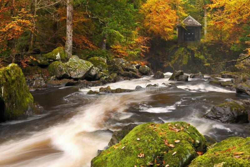 Rio com as cores do outono em Escócia imagem de stock royalty free