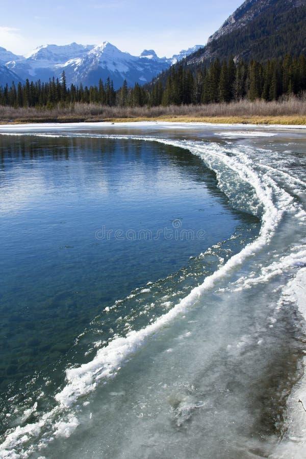 Rio da curva em Banff imagem de stock royalty free