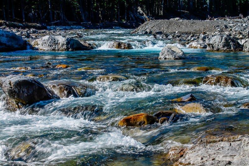 Rio da curva no fluxo rápido fotos de stock