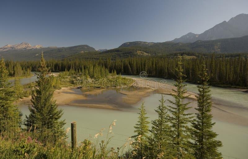 Rio da curva no parque nacional de Banff imagem de stock royalty free