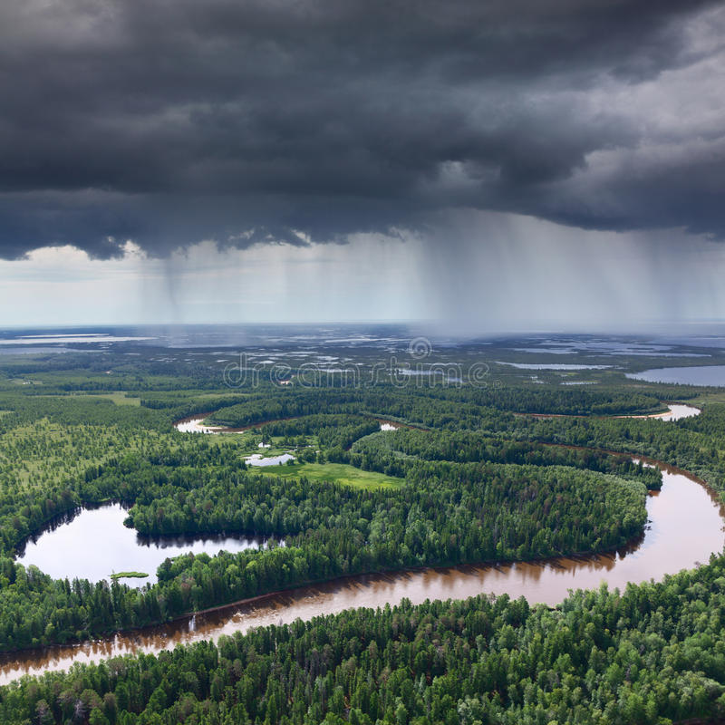 Rio da floresta no dia chuvoso fotografia de stock