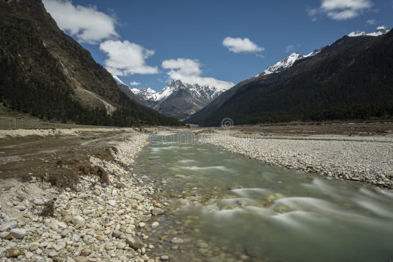 Rio da geleira que flui no vale de Yumthang, Lachung, Sikkim, ?ndia imagem de stock royalty free