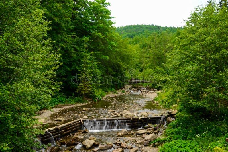 Rio da montanha imagens de stock