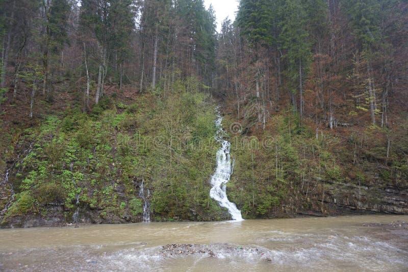 Rio da montanha ap?s a chuva nos Carpathians imagem de stock royalty free