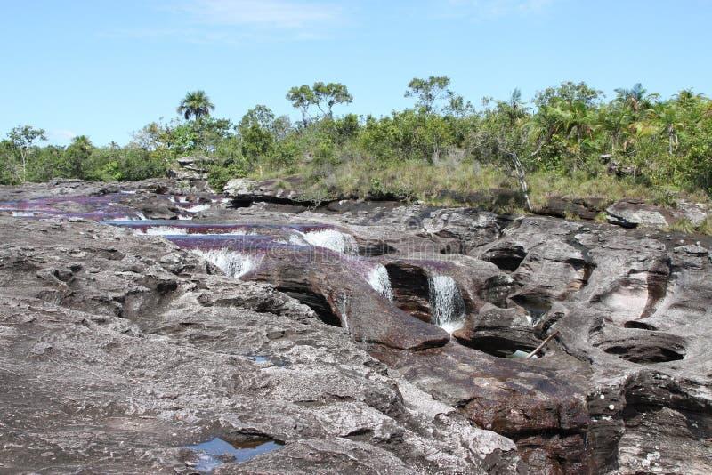 Rio da montanha de Canio Cristales colômbia fotos de stock royalty free