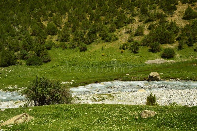 Rio da montanha, desfiladeiro de Galuyan, Quirguizistão foto de stock