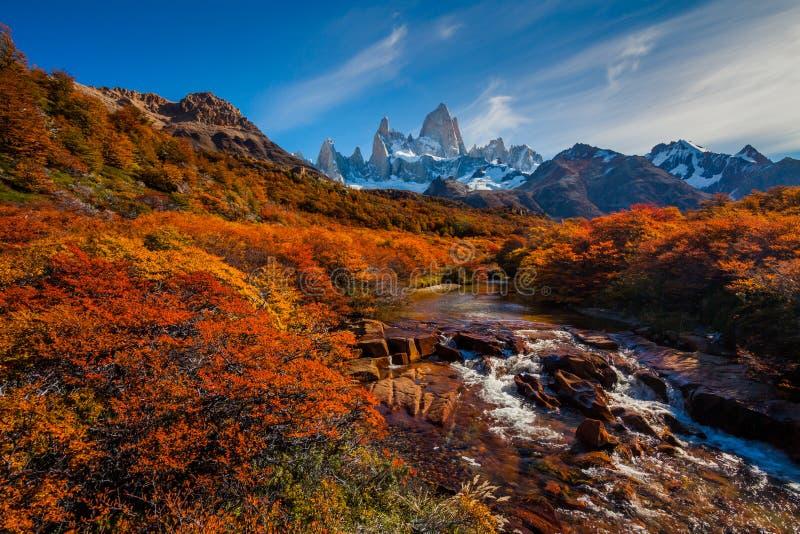 Rio da montanha e montagem Fitz Roy Patagonia, Argentina fotos de stock royalty free