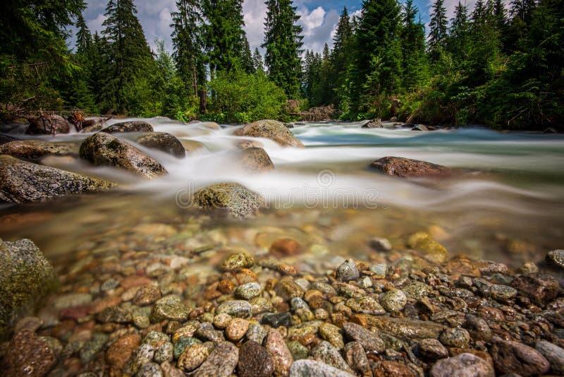 rio da montanha da floresta com a cachoeira sobre as rochas imagem de stock royalty free