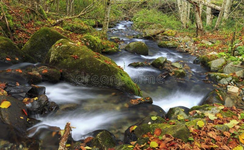 Rio da montanha no outono atrasado foto de stock