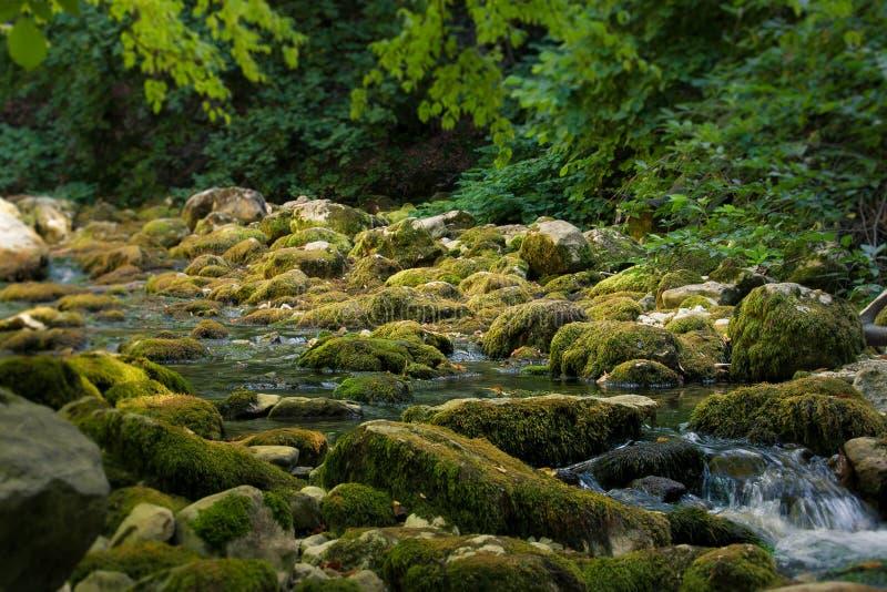 Rio da montanha que corre através de Grand Canyon da parte inferior de Crimeia imagem de stock royalty free
