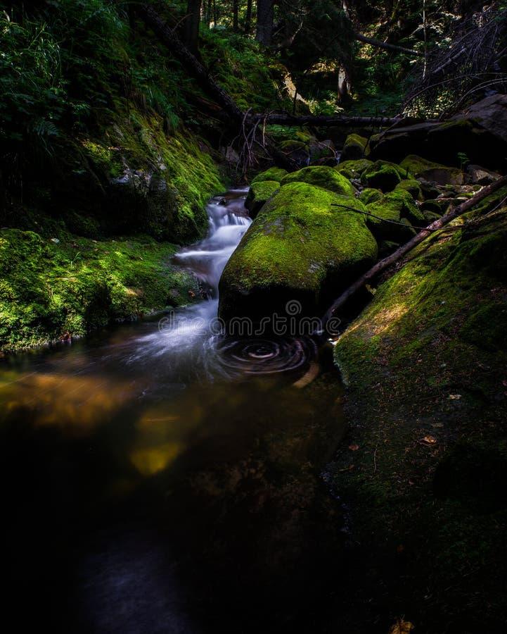 Rio da montanha sobre Smolyan, Bulgária fotos de stock